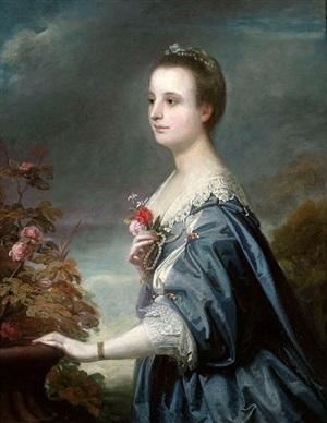 portrait of mary townshend by joshua reynolds