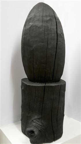 black egg and stump by david nash