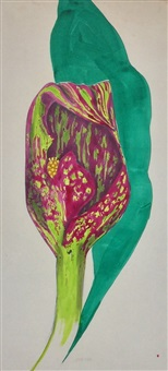 study for jack in the pulpit by marjorie virginia strider