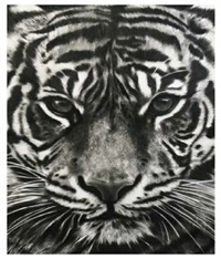 study of tiger head by robert longo