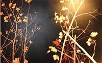 outside: san fernando night by andrew taylor