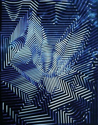 venus by victor vasarely