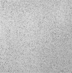 untitled (white on black) by teo gonzález