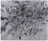 the mathematics of droves by julie mehretu