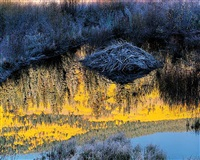 beaver lodge at sunrise, colorado by christopher burkett