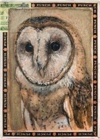 barn owl / punch by ed musante