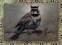 horned lark / curly head 2 by ed musante