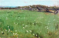 field of dandelions by theodore robinson
