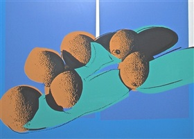 space fruit: still lifes cantaloupes i by andy warhol