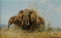 elephants in the wilderness by david shepherd