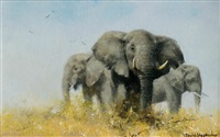 three african elephants by david shepherd
