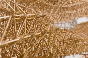 strata (detail) by stephen talasnik