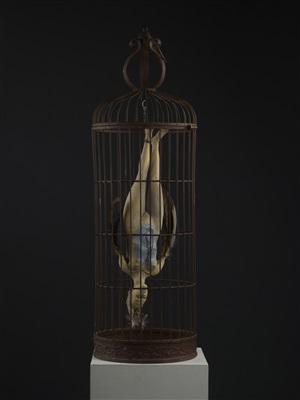 cage by susannah zucker
