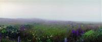 fogged-in, mull by jan w. faul