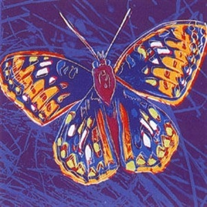 san francisco silverspot (butterfly) by andy warhol
