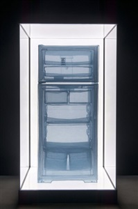 specimen series refrigerator apartment a 348 west 22nd street new york ny 10011 usa by do ho suh