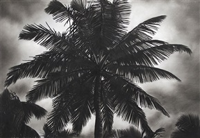 untitled (palm tree, 6/6/14) by robert longo
