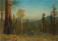 mariposa big tree grove, yosemite by albert bierstadt