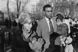 central park zoo, new york city by garry winogrand