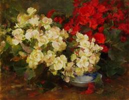 begonias by stephanie birdsall