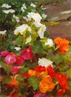 begonias and impatiens by kathy anderson