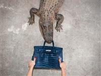 gator birkin by tyler shields