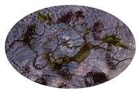 tide pool 6 april 2014 by susan derges