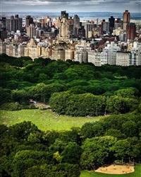 central park by david drebin