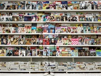 hiding in austria magazine rack by liu bolin