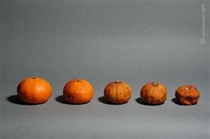 mandarine 3 by mario strack