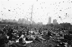 peace demonstration, central park, new york by garry winogrand