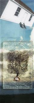 wind ii by judith kindler