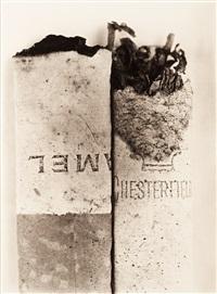 cigarette no. 037, new york by irving penn