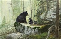 untitled - black bear with cubs by michael coleman