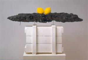 zitronenschiff by joachim elzmann