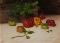 heirloom tomatoes and basil by grace mehan devito