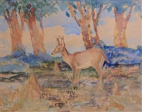 florida key deer by john singer sargent