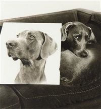 double portrait by william wegman