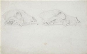 two studies of the skull of an animal by eugène delacroix