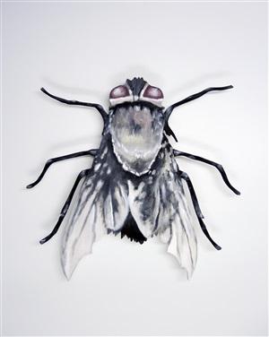insekt by jutta kritsch