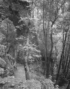 darren almond, carl blechen landscapes bleibtreustr. by darren almond