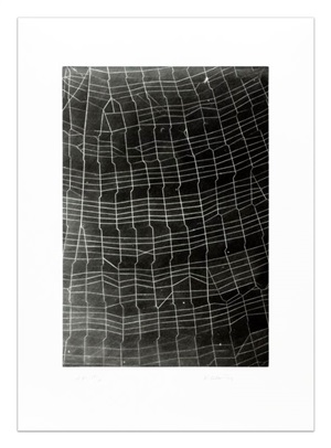 web ladder by vija celmins
