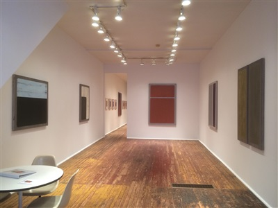 barry goldberg exhibition ilions and tulipsibr front room installation view