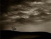 cloud/tree, south dakota by jack spencer