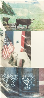 witness (from the speculation series) by robert rauschenberg