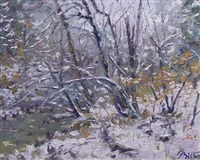 winter stream by pierre bittar