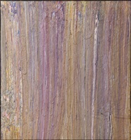 untitled 81a-5 by larry poons
