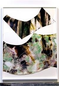 artwork 44 by mariah robertson