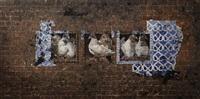 pigeon holed ii by jamil naqsh