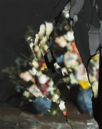 on reflection, material e06 (after j. brueghel the elder) by ori gersht